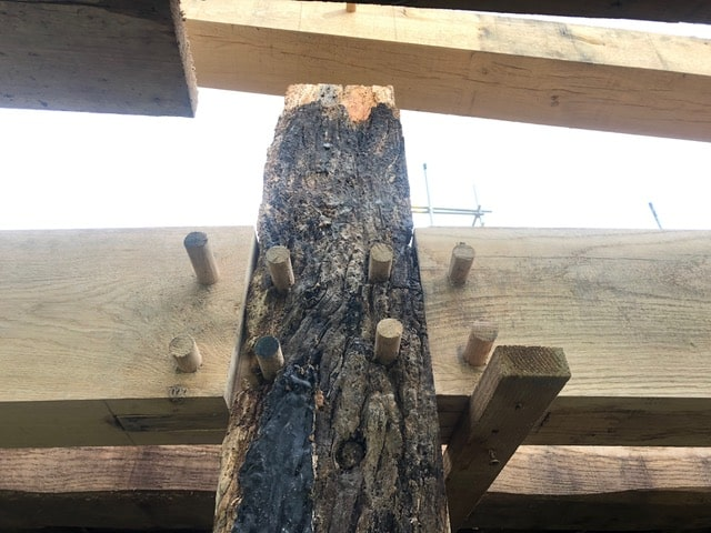 A wood oak column with bark stands upright against a horizontal wooden plank, the two are joined together with wooden pegs.