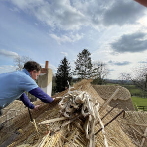A thatcher in a blue t-shirt works on top of a pitched roof, laying out thatch to complete the re-thatched cottage. Photo taken from the top of the roof. Communion Architects Hereford, Herefordshire.